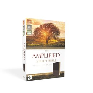 Amplified Study Bible, Large Print, Imitation Leather, Brown
